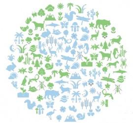 Conservación de la Biodiversidad