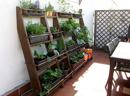 Horticultura urbana en balcones y terrazas - Huerto en la terraza ...